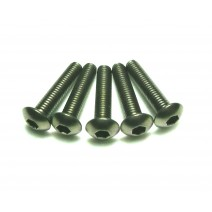 Titanium Screw, 3 x 16mm (Round Head, 8pcs) #TP-BH 3X16T