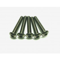 Titanium Screw, 3 x 18mm (Round Head, 8pcs) #TP-BH 3X18T
